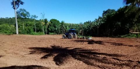 Produtores de Anchieta recebem incentivo para plantio de feijão