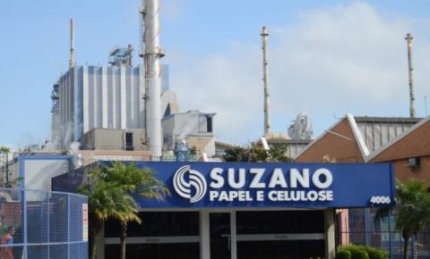 Unidade da Suzano em Cachoeiro será inaugurada em março